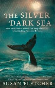 Silver Dark Sea